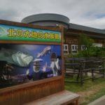留辺蘂の北の大地の水族館はドクターフィッシュとライブが人気?