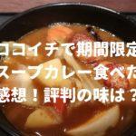 ココイチで期間限定「スープカレー」食べた感想!評判の味は?