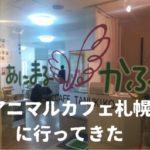 アニマルカフェ札幌に行ってきた!ハリネズミがめちゃかわいい!