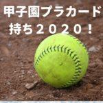 甲子園プラカード持ち2020!センバツと夏で選考に違いあり?